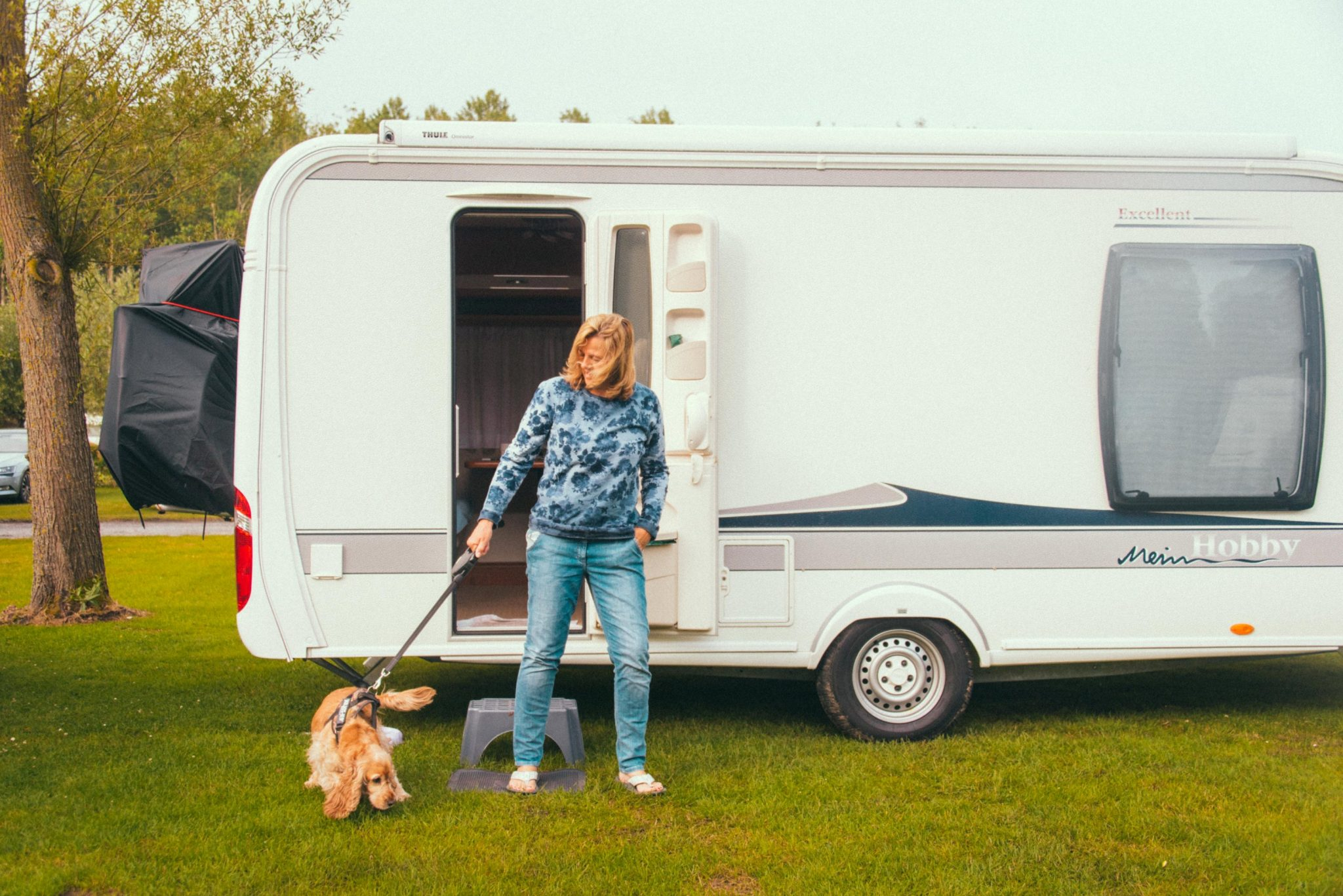 Camping Groeneveld - Camper en mobilehome hond
